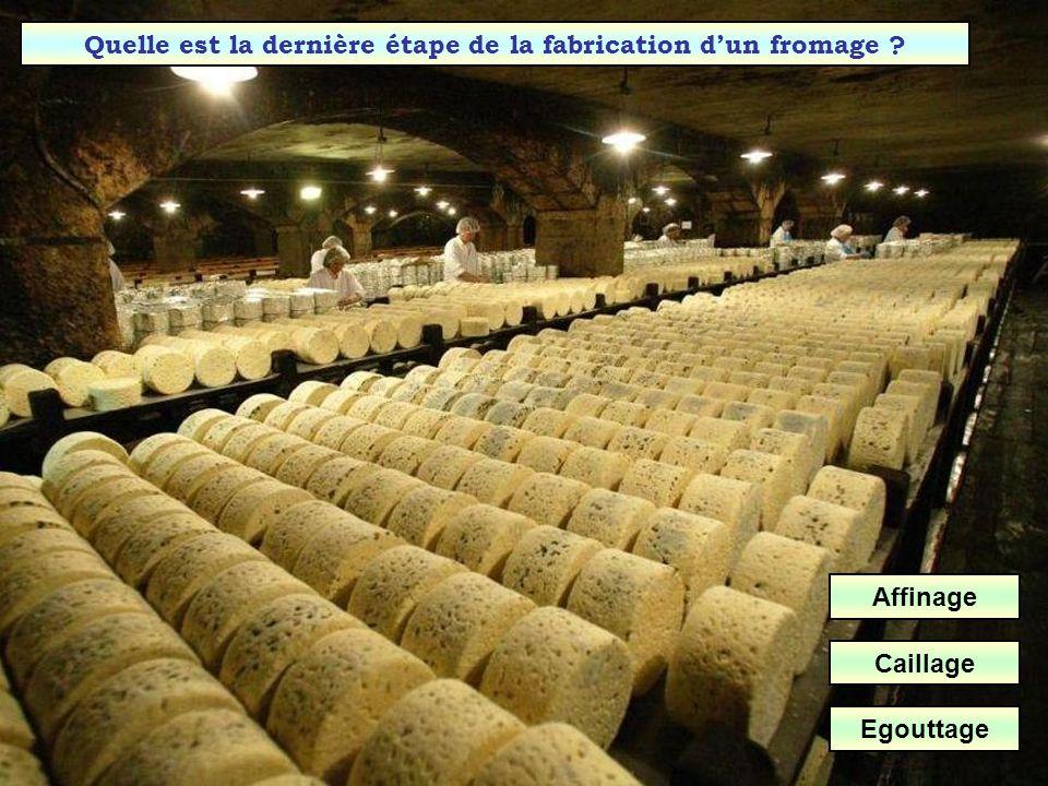 Quelle est la première étape dans la fabrication dun fromage ? Affinage Caillage Egouttage