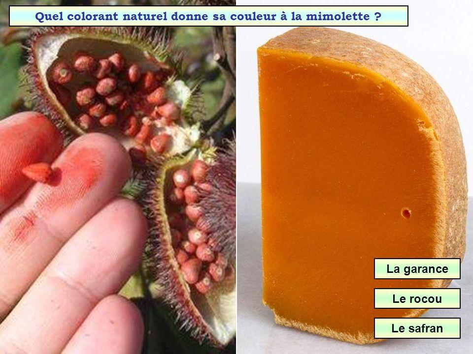 Dans quelle région est produite la mimolette ? Alpes Auvergne Nord