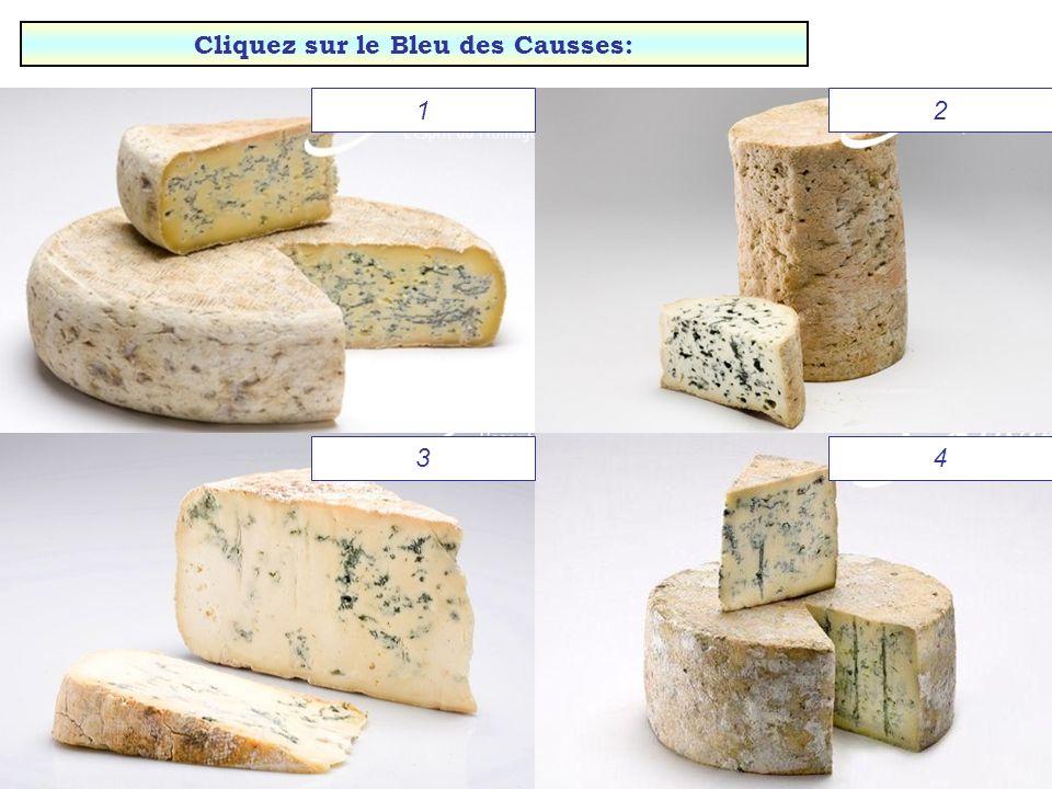 Brie de Meaux Chaource Saint-Félicien Langres Bravo ! Cliquez pour continuer