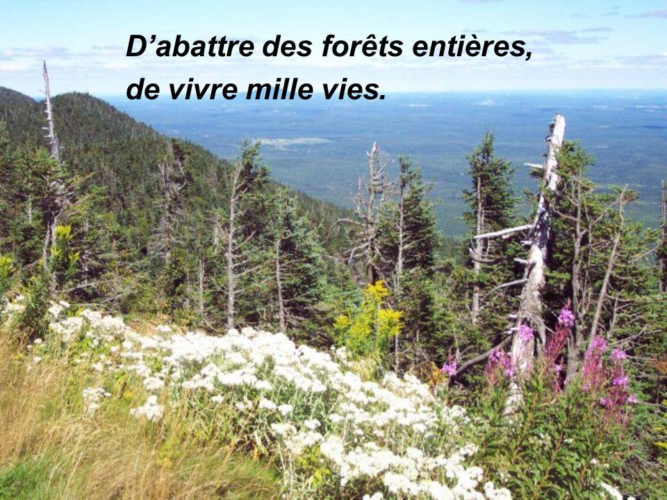 Dabattre des forêts entières, de vivre mille vies.