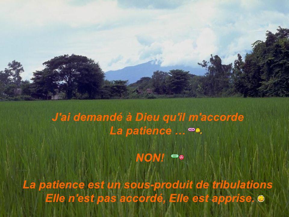 J'ai demandé à Dieu qu'il m'accorde La patience … NON! La patience est un sous-produit de tribulations Elle n'est pas accordé, Elle est apprise.