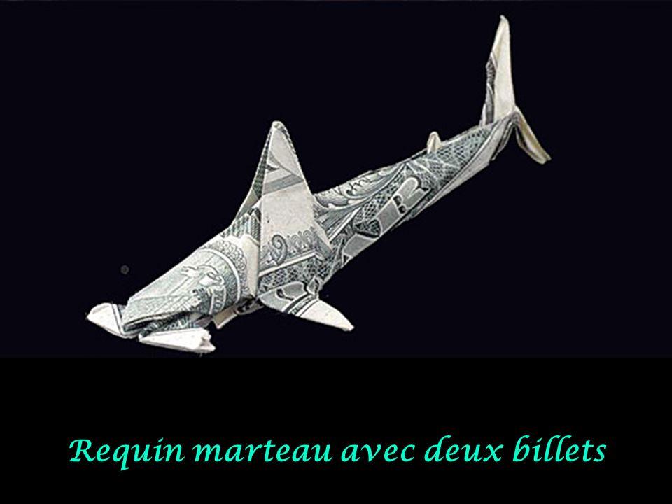 Requin avec un billet
