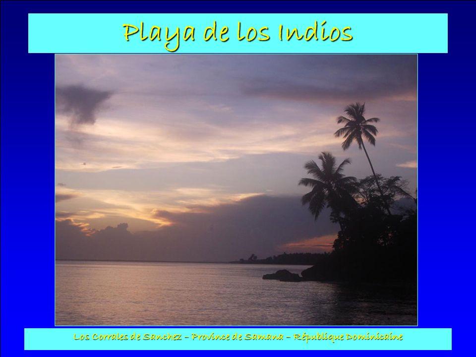 Playa de los Indios Los Corrales de Sanchez – Province de Samana – République Dominicaine Balançoires : Pourvues de 2 balançoires, dune balancelle et dune barre fixe, l abri est construit en poteaux de coco et son toit en cana.