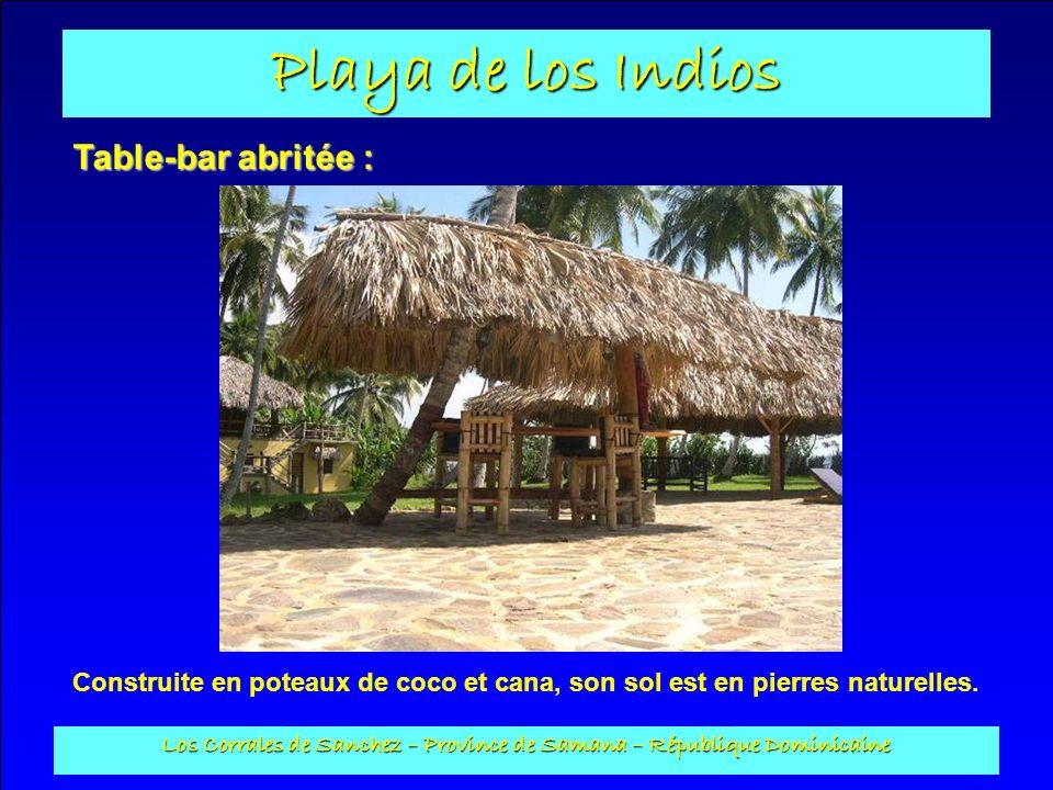 Playa de los Indios Los Corrales de Sanchez – Province de Samana – République Dominicaine Table-bar abritée : Construite en poteaux de coco et cana, s