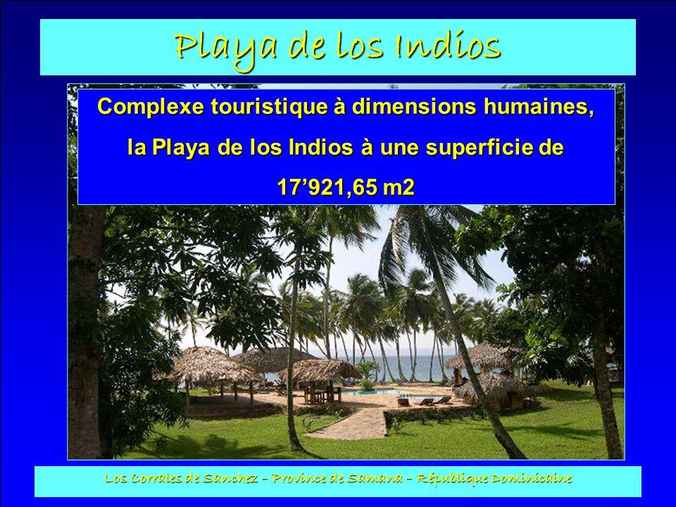 Playa de los Indios Los Corrales de Sanchez – Province de Samana – République Dominicaine Local électricité : Construit en plots avec toit en cana, il a une surface au sol de 6 m2.