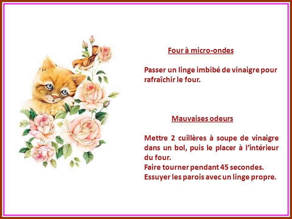 Fleurs coupées (prolonger leur fraîcheur) Mettre 1 cuillère à café de vinaigre dans leau du vase. Glacière (supprimer lodeur de renfermé) Imbiber de v