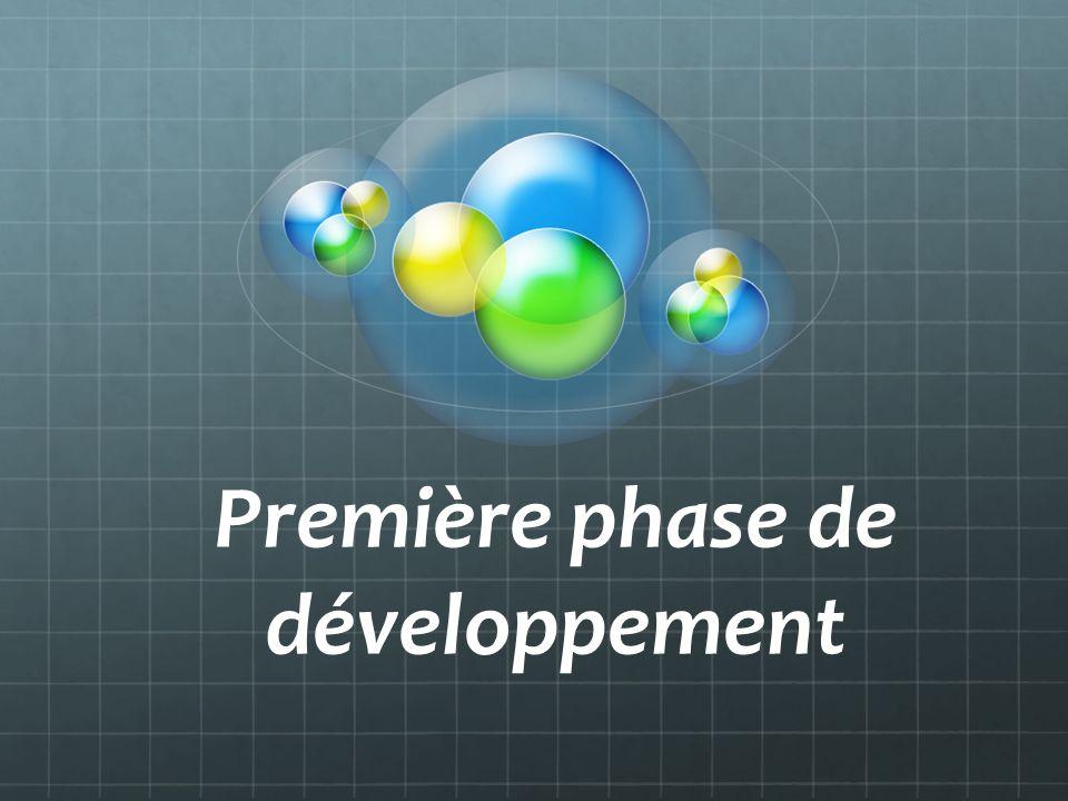 Première phase de développement