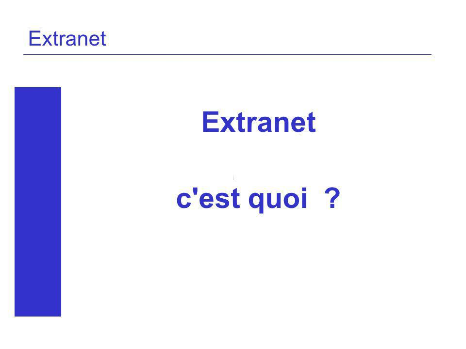 Extranet Extranet c'est quoi ?