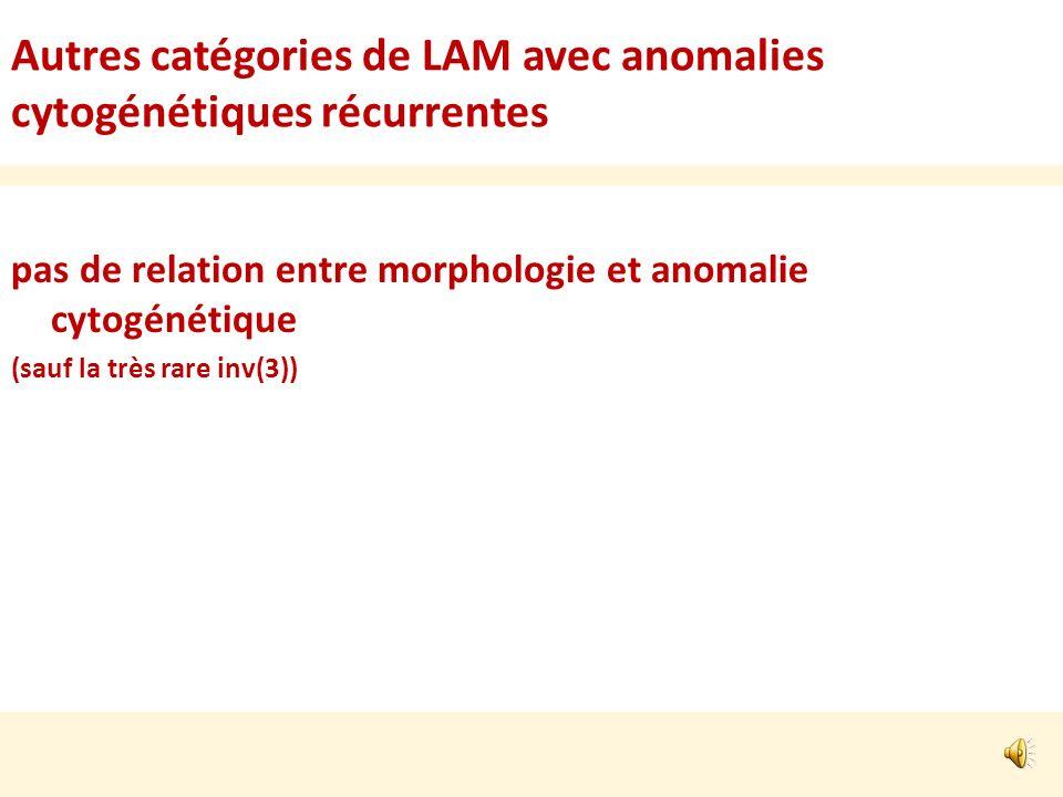 Autres catégories de LAM avec anomalies cytogénétiques récurrentes pas de relation entre morphologie et anomalie cytogénétique (sauf la très rare inv(3))