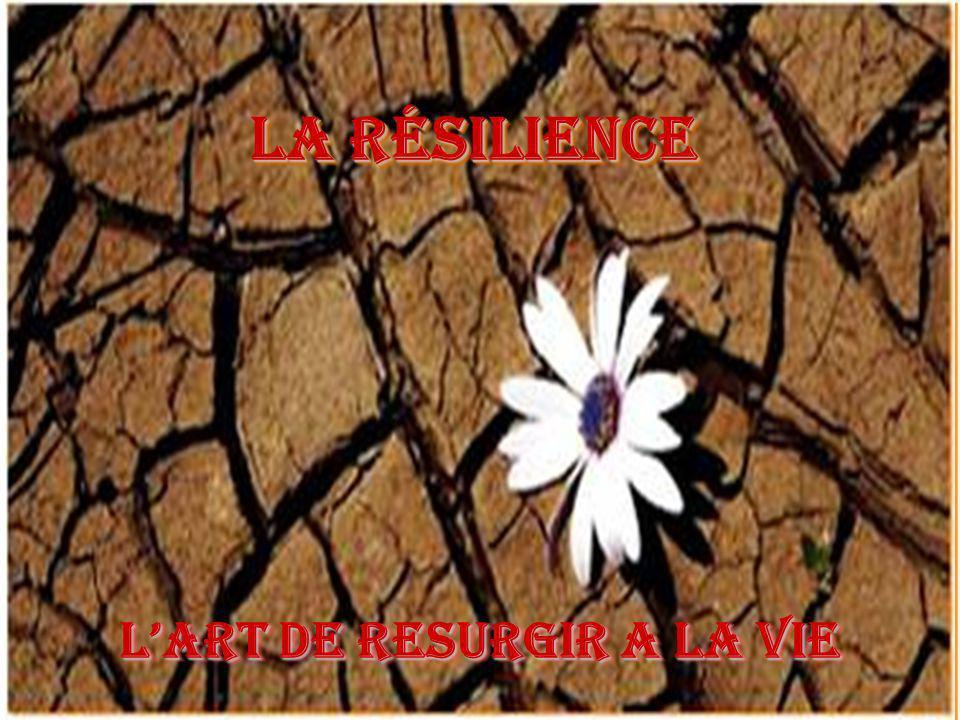 LA RÉSILIENCE LA RÉSILIENCE LART DE RESURGIR A LA VIE LART DE RESURGIR A LA VIE