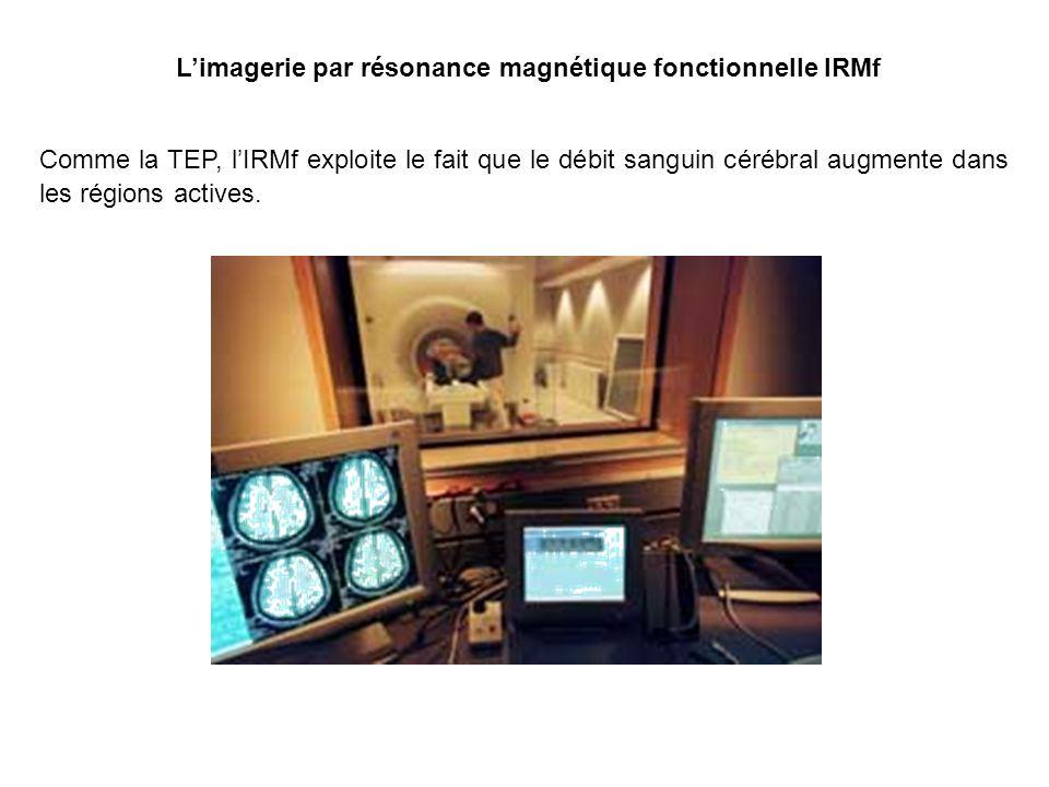 Limagerie par résonance magnétique fonctionnelle IRMf Comme la TEP, lIRMf exploite le fait que le débit sanguin cérébral augmente dans les régions actives.