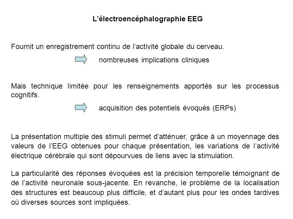 Lélectroencéphalographie EEG Fournit un enregistrement continu de lactivité globale du cerveau.