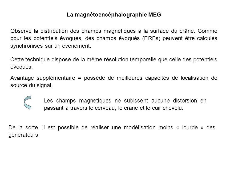 La magnétoencéphalographie MEG Observe la distribution des champs magnétiques à la surface du crâne.
