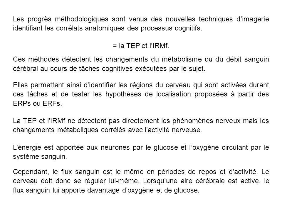 La TEP et lIRMf ne détectent pas directement les phénomènes nerveux mais les changements métaboliques corrélés avec lactivité nerveuse.