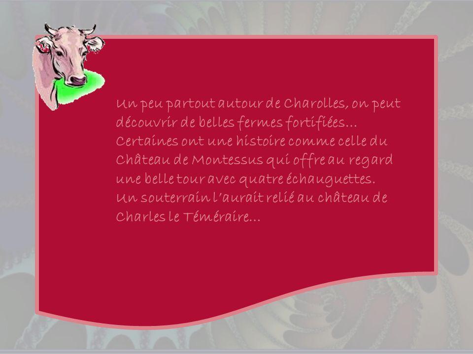 Cest en 1995 que fut créé lInstitut du Charolais.