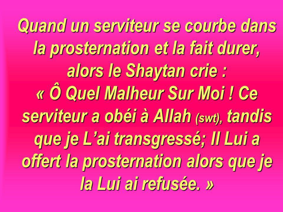 Quand un serviteur se courbe dans la prosternation et la fait durer, alors le Shaytan crie : « Ô Quel Malheur Sur Moi ! Ce serviteur a obéi à Allah (s