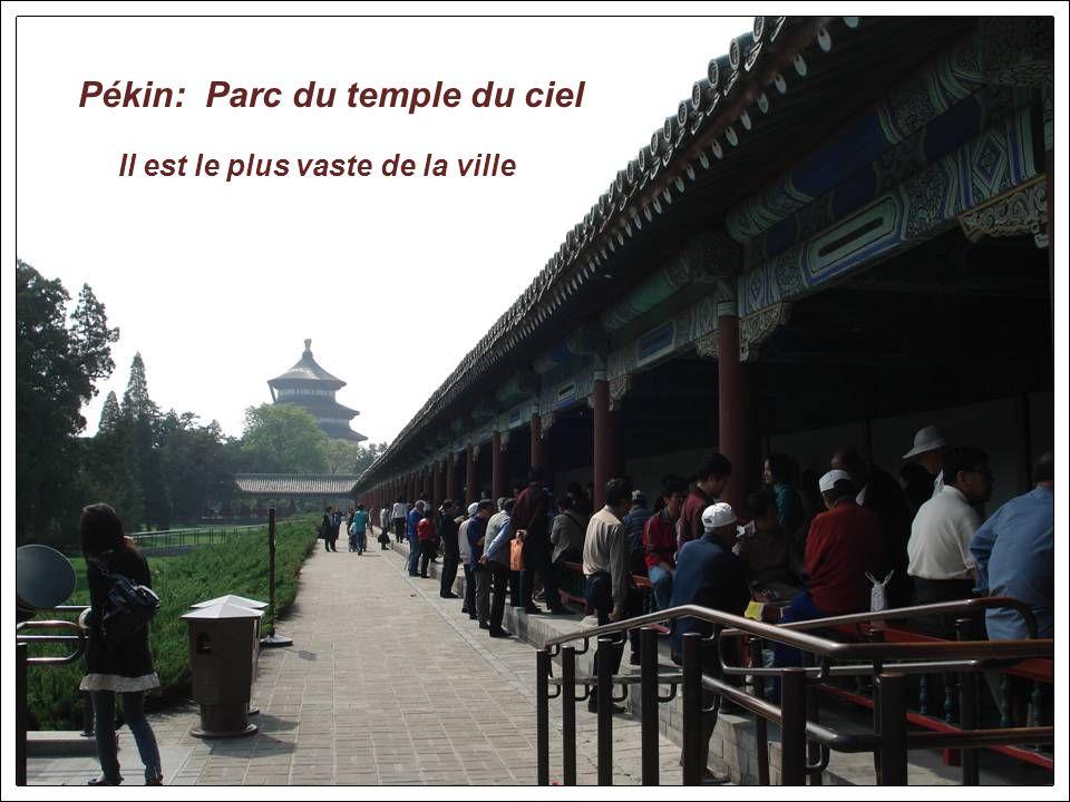Xian: Pagode de loie sauvage. Elle fut érigée pour abriter de précieux textes bouddhiques rapportés dInde