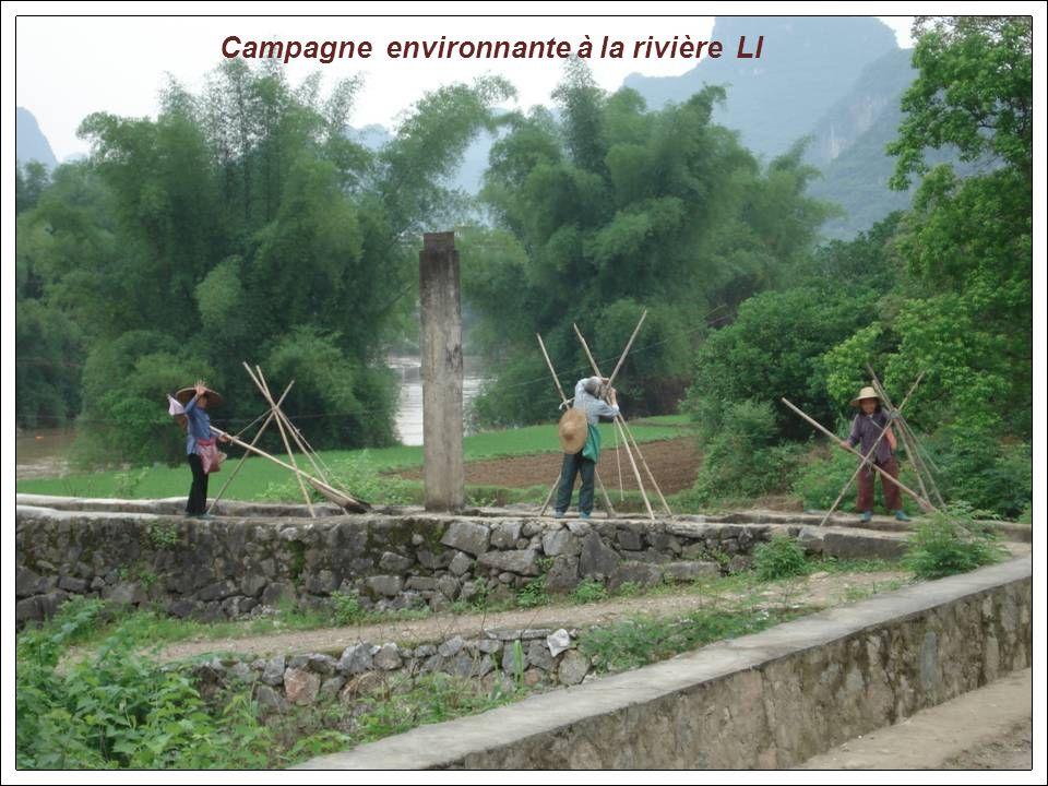 Campagne environnante à la rivière LI