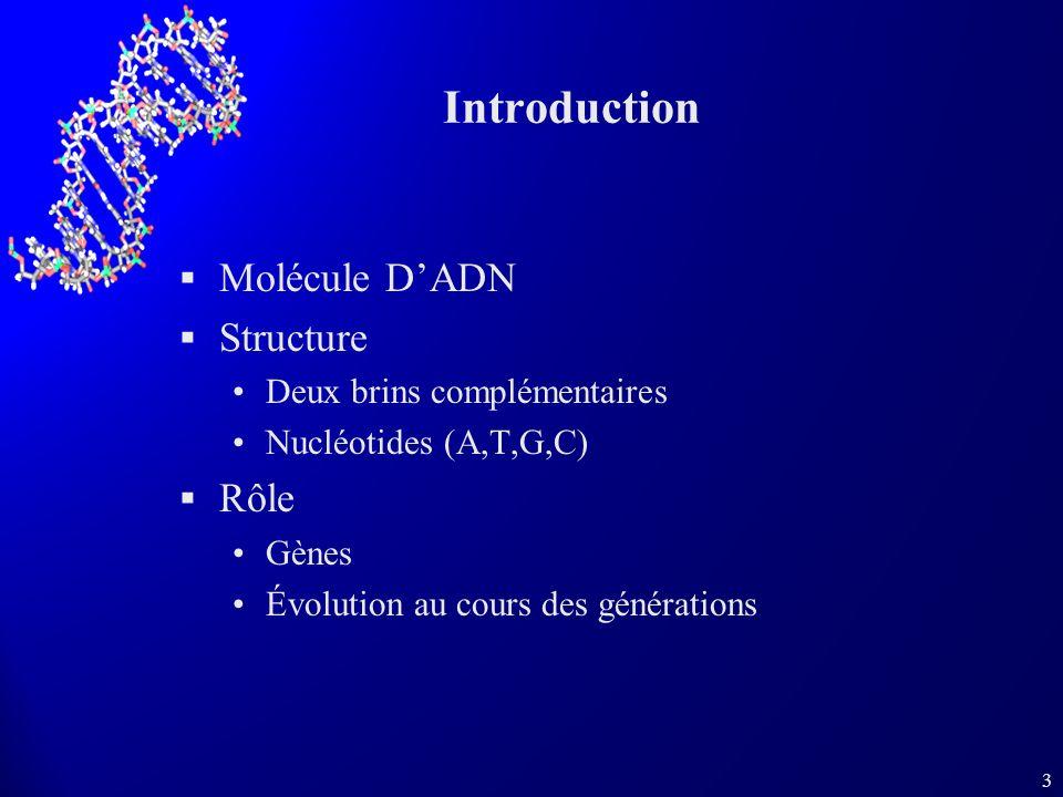 3 Introduction Molécule DADN Structure Deux brins complémentaires Nucléotides (A,T,G,C) Rôle Gènes Évolution au cours des générations
