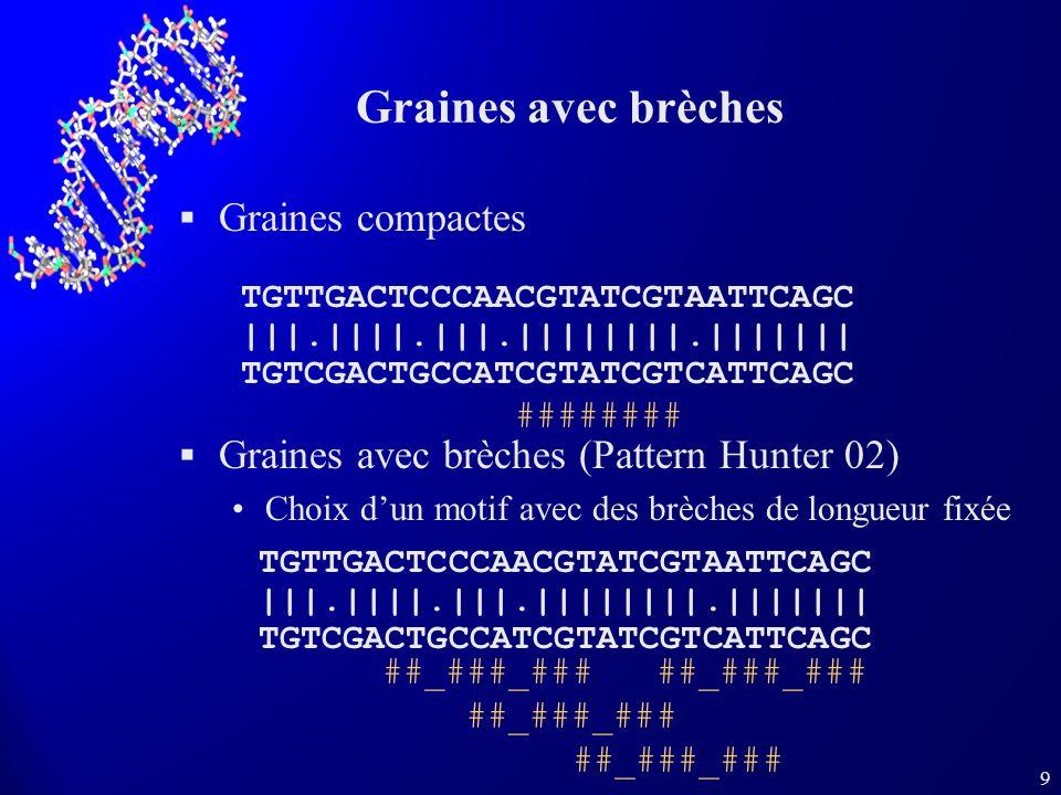 9 Graines compactes Graines avec brèches (Pattern Hunter 02) Choix dun motif avec des brèches de longueur fixée TGTTGACTCCCAACGTATCGTAATTCAGC |||.||||.|||.||||||||.||||||| TGTCGACTGCCATCGTATCGTCATTCAGC Graines avec brèches TGTTGACTCCCAACGTATCGTAATTCAGC |||.||||.|||.||||||||.||||||| TGTCGACTGCCATCGTATCGTCATTCAGC ######## ##_###_###