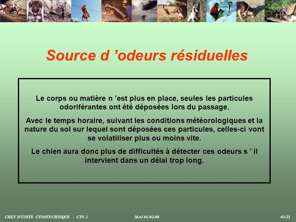 Méthode du questage Les chiens recherchent une source d odeurs permanentes (humain) sur des secteurs délimités sur carte IGN.