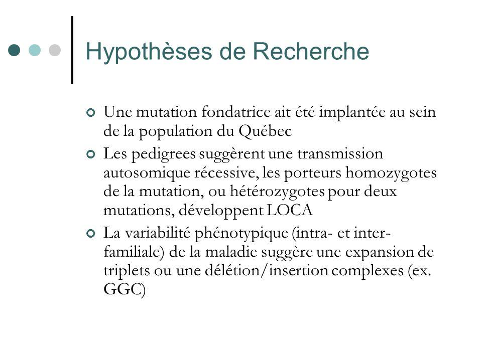 Hypothèses de Recherche Une mutation fondatrice ait été implantée au sein de la population du Québec Les pedigrees suggèrent une transmission autosomi