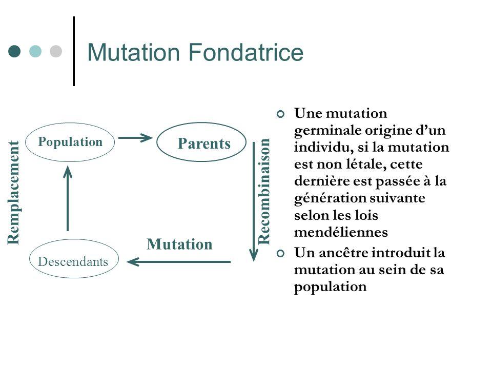 Mutation Fondatrice Une mutation germinale origine dun individu, si la mutation est non létale, cette dernière est passée à la génération suivante selon les lois mendéliennes Un ancêtre introduit la mutation au sein de sa population Population Parents Descendants Mutation Remplacement Recombinaison