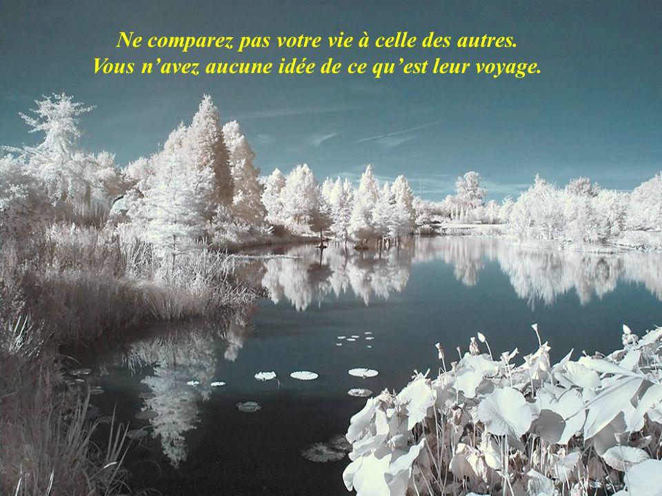 Ne comparez pas votre vie à celle des autres. Vous navez aucune idée de ce quest leur voyage.
