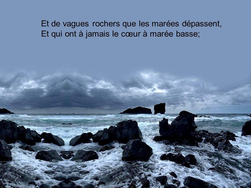 Et de vagues rochers que les marées dépassent, Et qui ont à jamais le cœur à marée basse;