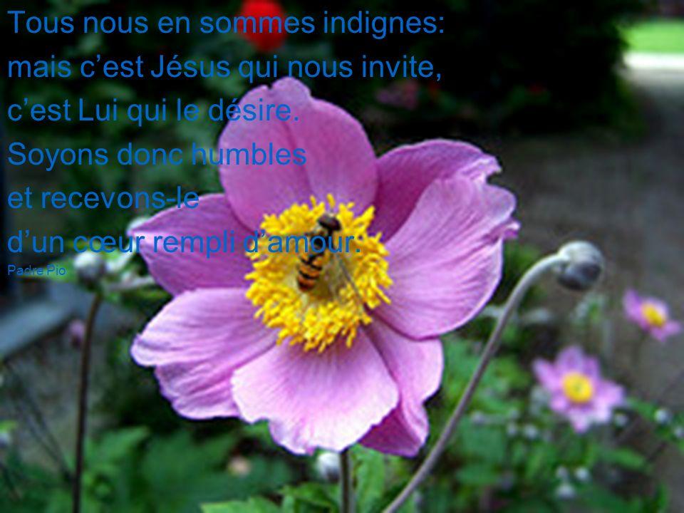 Aime de tout ton être, Celui qui par amour pour toi, sest donné tout entier. sainte Claire Sœur Édith Gaudet