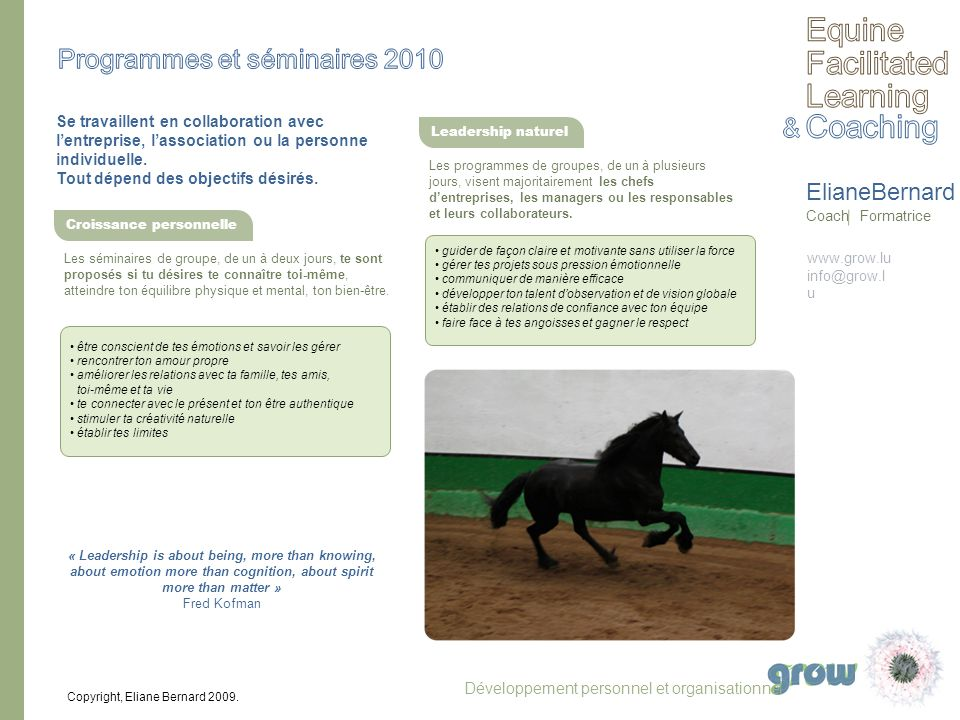 www.grow.lu info@grow.l u ElianeBernard Coach Formatrice Copyright, Eliane Bernard 2009. Se travaillent en collaboration avec lentreprise, lassociatio