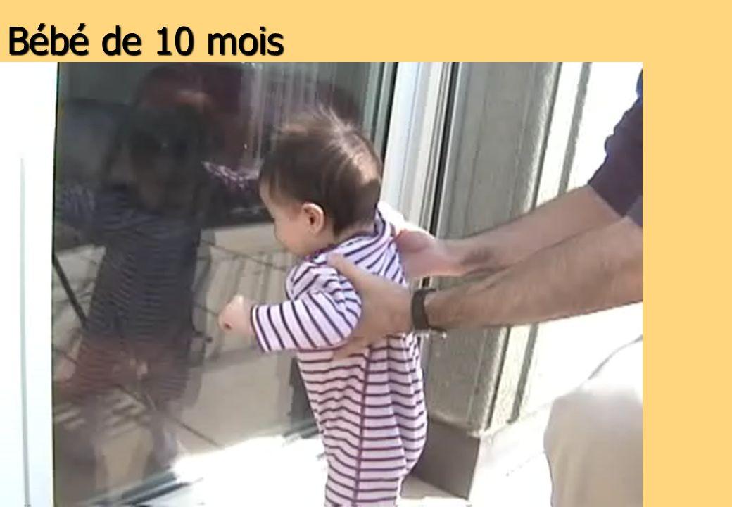 Bébé de 10 mois