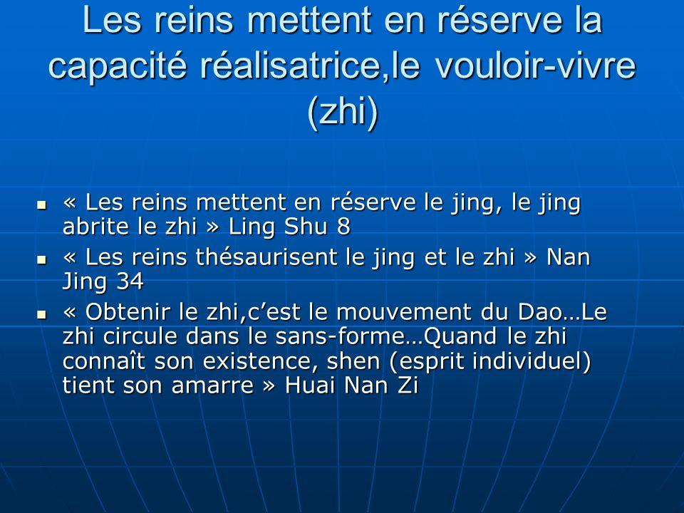 Les reins mettent en réserve la capacité réalisatrice,le vouloir-vivre (zhi) « Les reins mettent en réserve le jing, le jing abrite le zhi » Ling Shu 8 « Les reins mettent en réserve le jing, le jing abrite le zhi » Ling Shu 8 « Les reins thésaurisent le jing et le zhi » Nan Jing 34 « Les reins thésaurisent le jing et le zhi » Nan Jing 34 « Obtenir le zhi,cest le mouvement du Dao…Le zhi circule dans le sans-forme…Quand le zhi connaît son existence, shen (esprit individuel) tient son amarre » Huai Nan Zi « Obtenir le zhi,cest le mouvement du Dao…Le zhi circule dans le sans-forme…Quand le zhi connaît son existence, shen (esprit individuel) tient son amarre » Huai Nan Zi