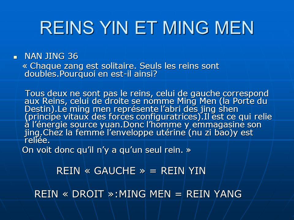 REINS YIN ET MING MEN NAN JING 36 NAN JING 36 « Chaque zang est solitaire.