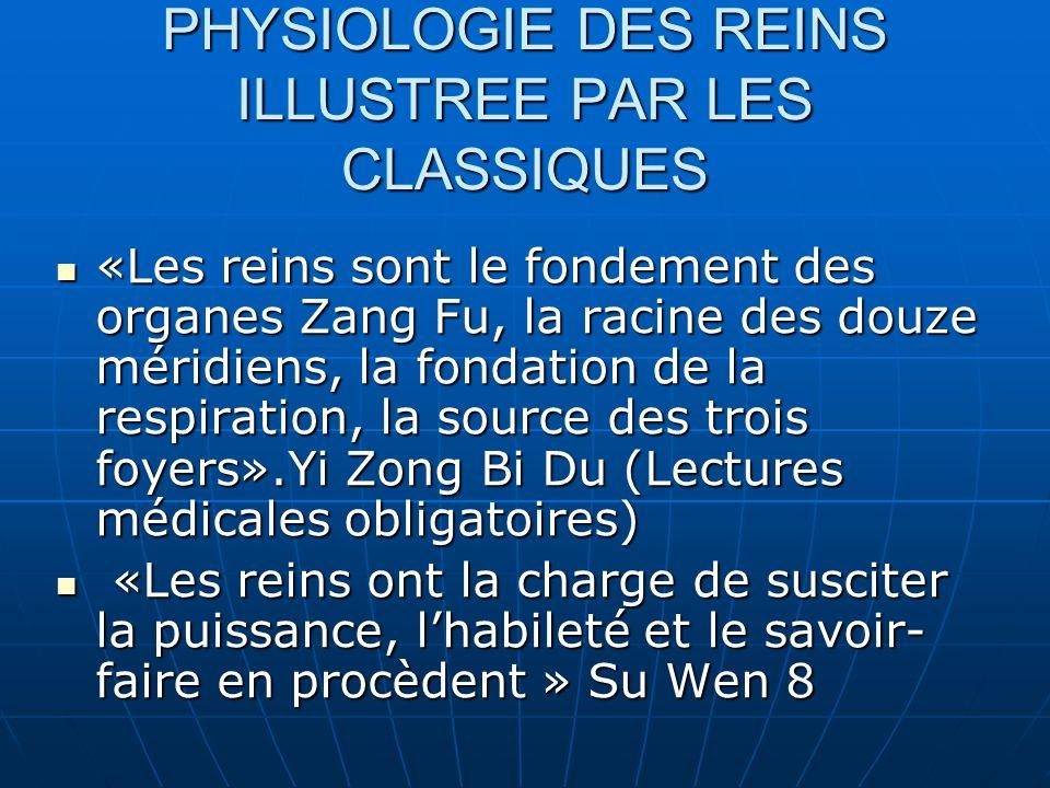 PHYSIOLOGIE DES REINS ILLUSTREE PAR LES CLASSIQUES «Les reins sont le fondement des organes Zang Fu, la racine des douze méridiens, la fondation de la respiration, la source des trois foyers».Yi Zong Bi Du (Lectures médicales obligatoires) «Les reins sont le fondement des organes Zang Fu, la racine des douze méridiens, la fondation de la respiration, la source des trois foyers».Yi Zong Bi Du (Lectures médicales obligatoires) «Les reins ont la charge de susciter la puissance, lhabileté et le savoir- faire en procèdent » Su Wen 8 «Les reins ont la charge de susciter la puissance, lhabileté et le savoir- faire en procèdent » Su Wen 8