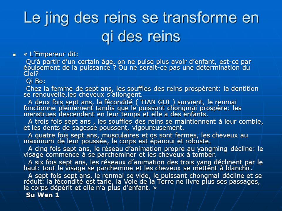 Le jing des reins se transforme en qi des reins « LEmpereur dit: « LEmpereur dit: Quà partir dun certain âge, on ne puise plus avoir denfant, est-ce par épuisement de la puissance .
