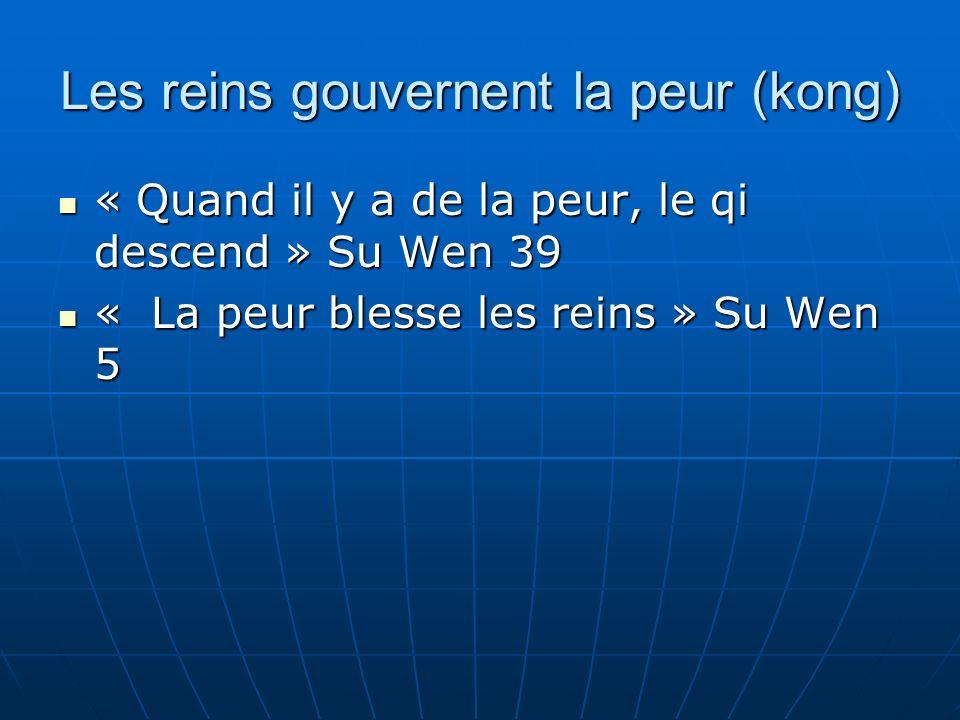 Les reins gouvernent la peur (kong) « Quand il y a de la peur, le qi descend » Su Wen 39 « Quand il y a de la peur, le qi descend » Su Wen 39 « La peur blesse les reins » Su Wen 5 « La peur blesse les reins » Su Wen 5