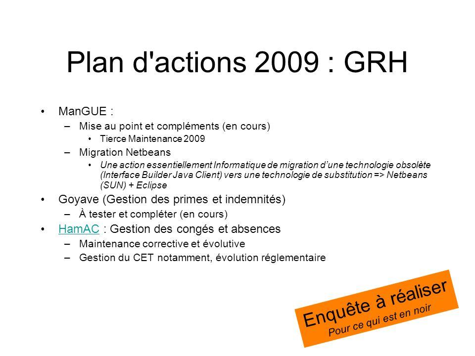 Plan d'actions 2009 : GRH ManGUE : –Mise au point et compléments (en cours) Tierce Maintenance 2009 –Migration Netbeans Une action essentiellement Inf
