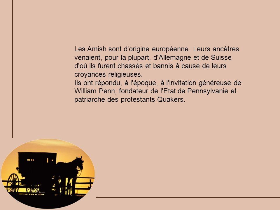 Les Amish sont d'origine européenne. Leurs ancêtres venaient, pour la plupart, d'Allemagne et de Suisse d'où ils furent chassés et bannis à cause de l