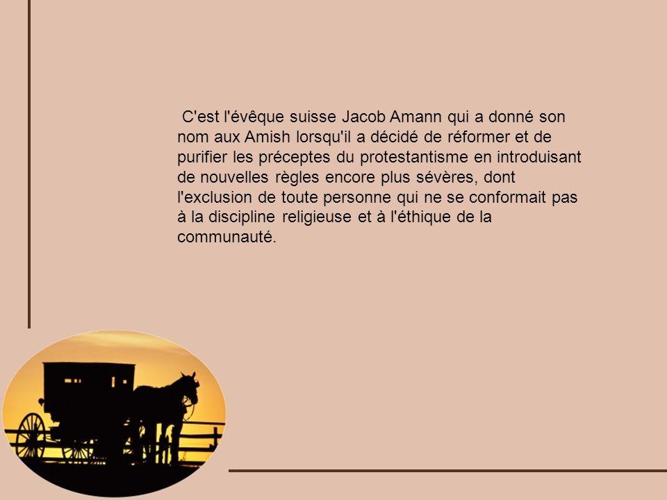C'est l'évêque suisse Jacob Amann qui a donné son nom aux Amish lorsqu'il a décidé de réformer et de purifier les préceptes du protestantisme en intro