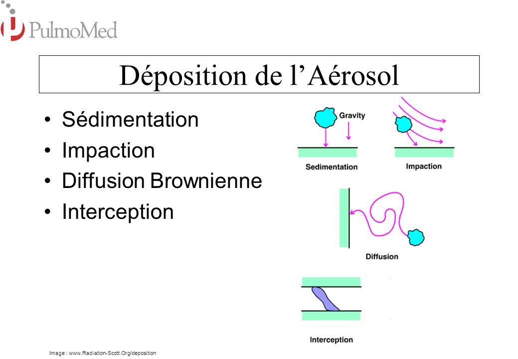 Déposition de lAérosol Déposition de Particules de différents diamètres Voies Centrales5-10µm (Trachée et les Bronches) Intermédiaires3-5µm (Bronches) Poumon Profond0,5-3µm (Bronchioles, Alvéoles)
