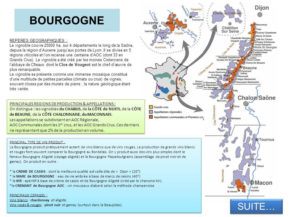 BOURGOGNE REPERES GEOGRAPHIQUES : Le vignoble couvre 25000 ha, sur 4 départements le long de la Saône, depuis la région dAuxerre jusquaux portes de Ly