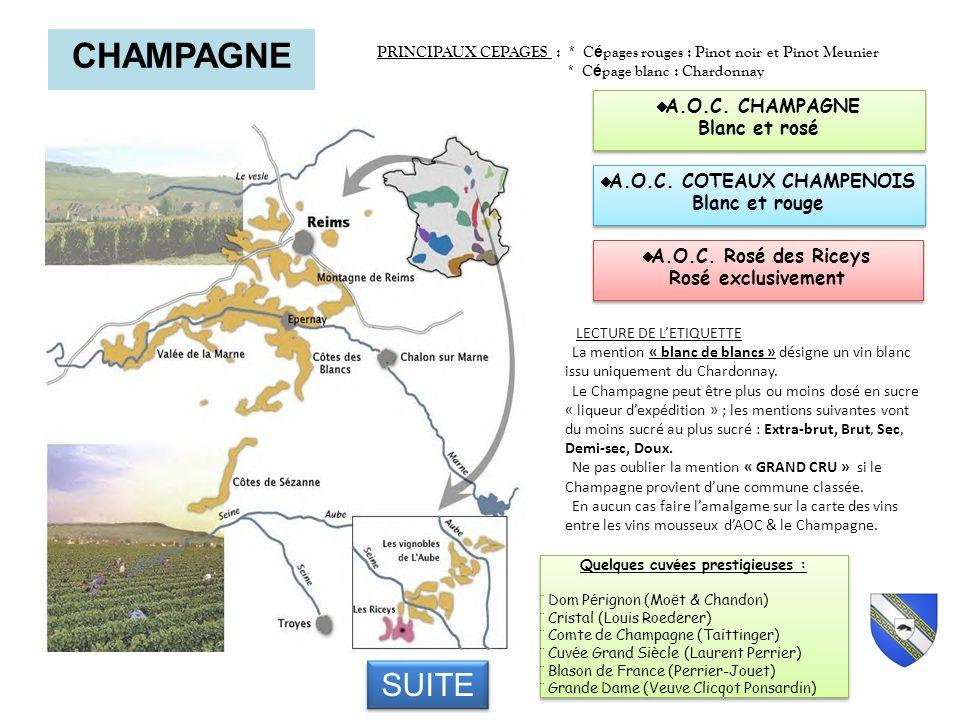 CHAMPAGNE PRINCIPAUX CEPAGES : * C é pages rouges : Pinot noir et Pinot Meunier * C é page blanc : Chardonnay Quelques cuv é es prestigieuses : Dom P