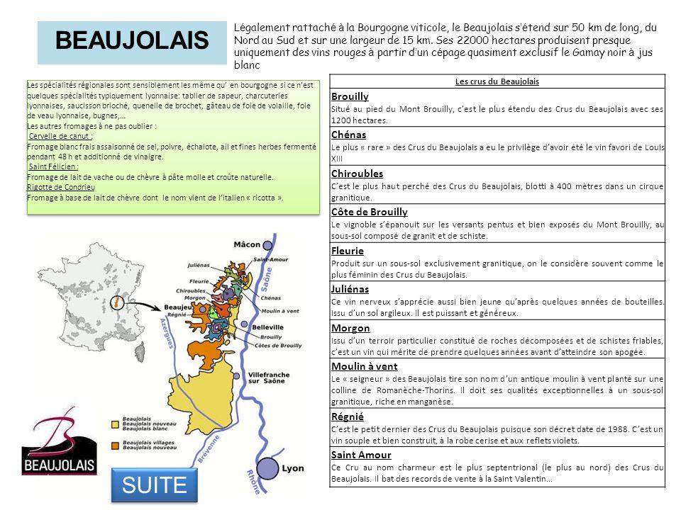 BEAUJOLAIS L é galement rattach é à la Bourgogne viticole, le Beaujolais s é tend sur 50 km de long, du Nord au Sud et sur une largeur de 15 km. Ses 2