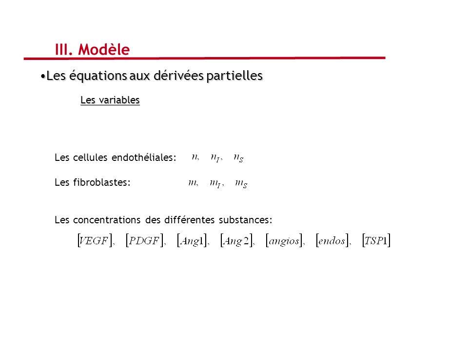 Les équations aux dérivées partiellesLes équations aux dérivées partielles Les variables Les cellules endothéliales: Les fibroblastes: Les concentrati