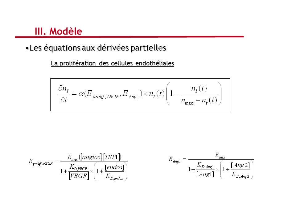 Les équations aux dérivées partiellesLes équations aux dérivées partielles La prolifération des cellules endothéliales III. Modèle