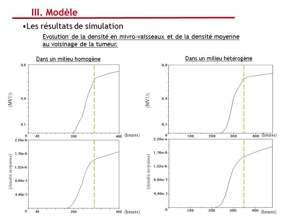 Dans un milieu homogène Les résultats de simulationLes résultats de simulation Dans un milieu hétérogène Evolution de la densité en mivro-vaisseaux et