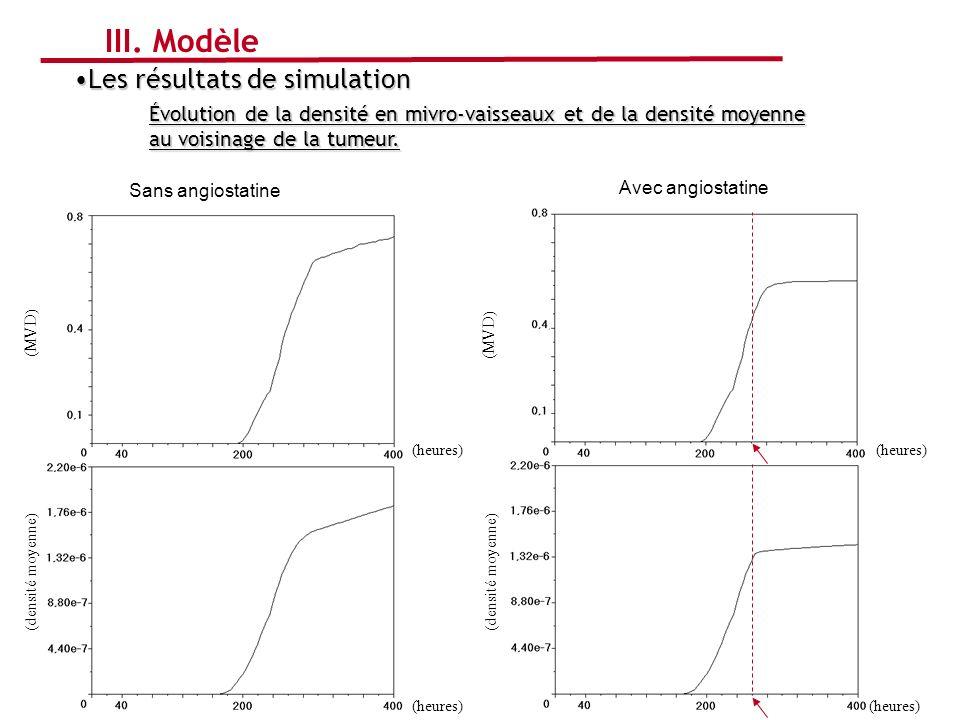 Avec angiostatine Sans angiostatine Les résultats de simulationLes résultats de simulation Évolution de la densité en mivro-vaisseaux et de la densité