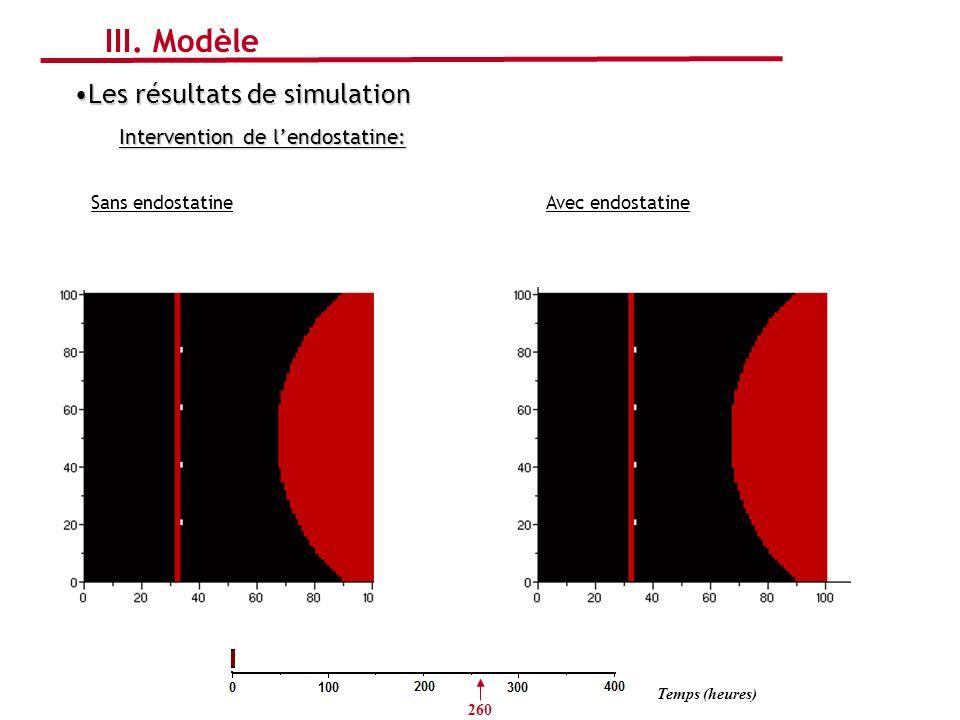 Sans endostatine Les résultats de simulationLes résultats de simulation Intervention de lendostatine: III. Modèle Temps (heures) 260 Avec endostatine
