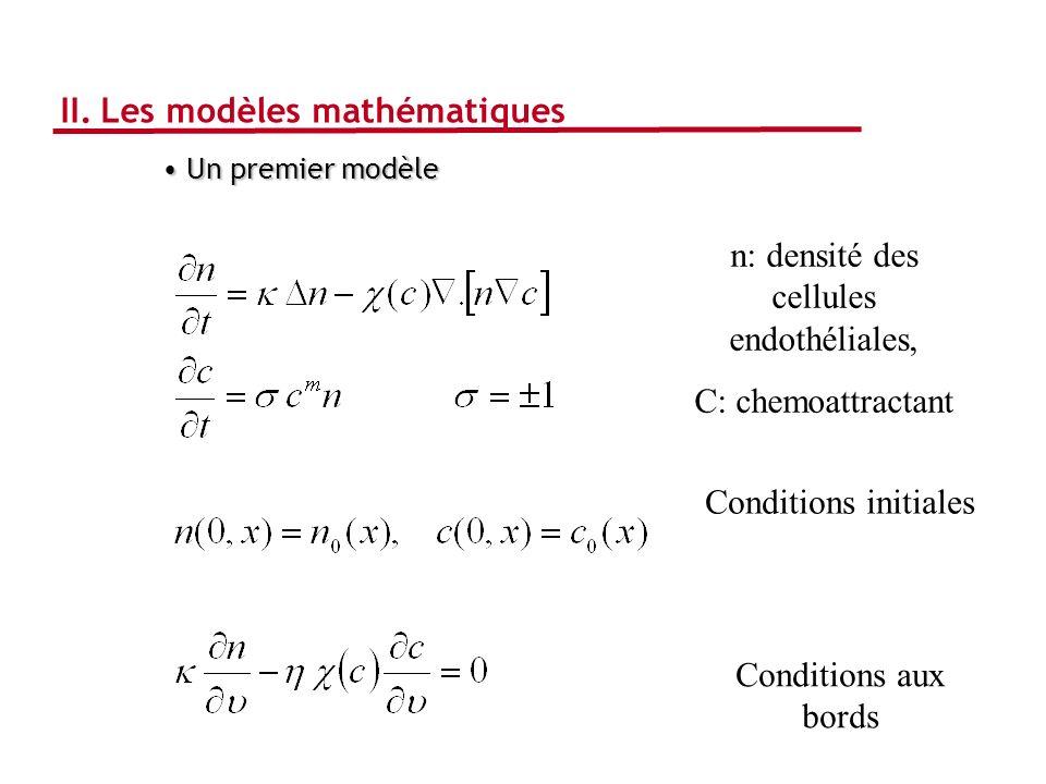 II. Les modèles mathématiques Un premier modèle Un premier modèle Conditions aux bords Conditions initiales n: densité des cellules endothéliales, C:
